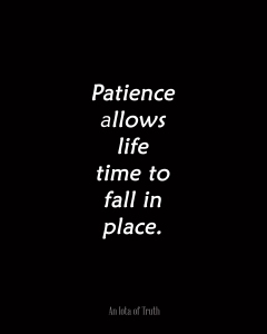 Patience-allows-life-time-to-fall-in-place.8x10